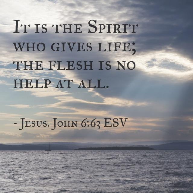 John 6-63 ESV