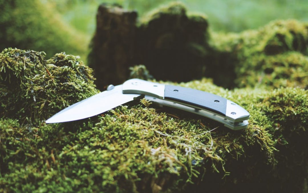 What's the Best Pocket Knife to Carry if You're Looking for Trouble?