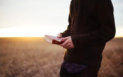 A Christmas Promise: The Word of God Will Never Fail
