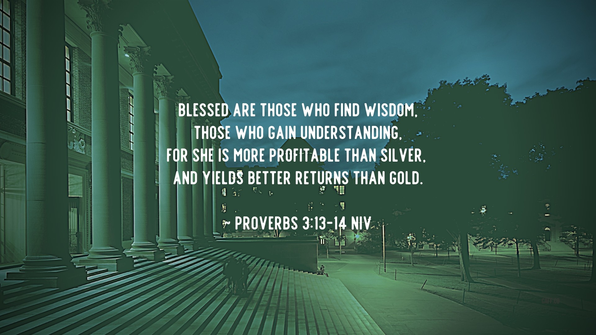 Find Wisdom