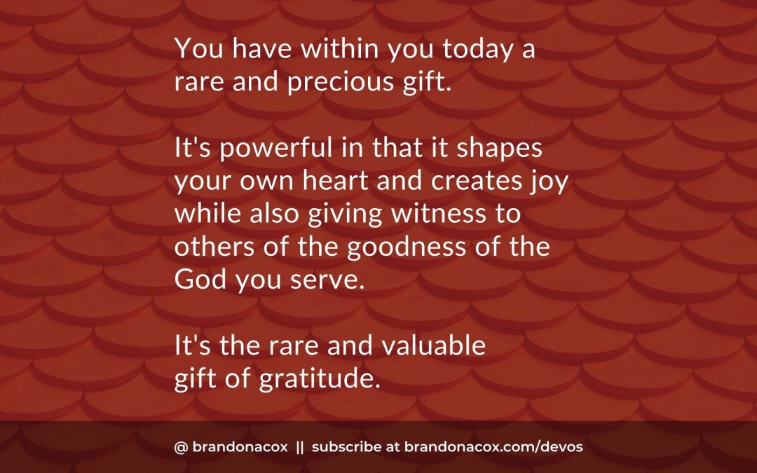The Rare and Valuable Gift of Gratitude