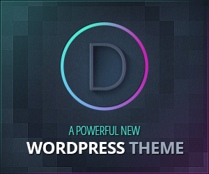 The Divi Premium WordPress Theme